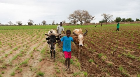 informe Día Mundial Agua WaterAid muestra coste productos que consumimos