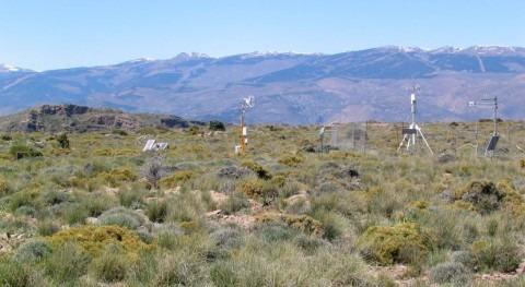 base datos mundial recoge intercambio CO2, agua y energía biosfera y atmósfera