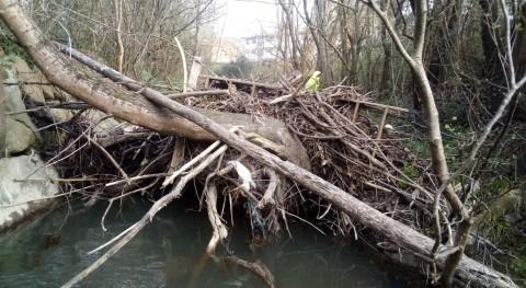 URA elimina tapón árboles y ramas regata Santa Luzia paso Gabiria