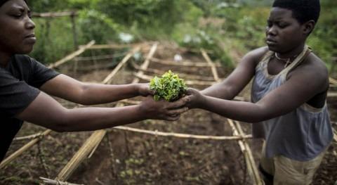 Transformar agricultura y sistemas alimentarios cuidar planeta