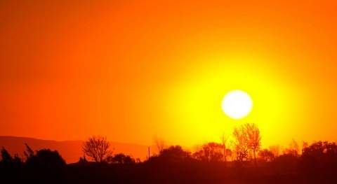 2016: Rumbo batir récords temperatura máximas