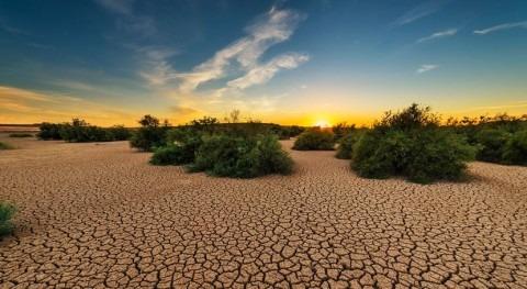 aumento episodios calor y sequía podría dañar cultivos todo mundo
