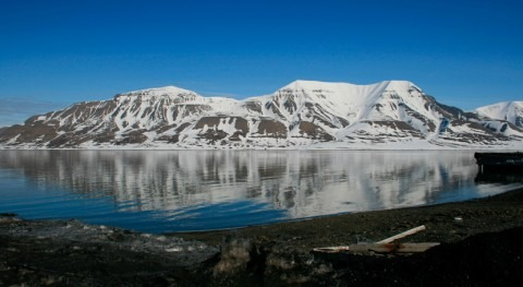 cambio climático provoca aumento productividad ecosistemas septentrionales