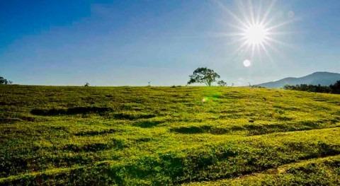 cambio climático avanza y Gobierno sigue inactivo, Ecologistas