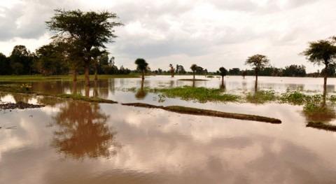cambio climático modifica fecha ocurrencia inundaciones Europa