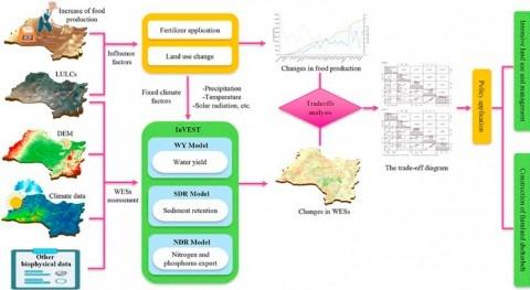 Cambios usos suelo afectan servicios ecosistémicos relacionados agua