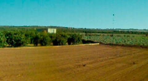 Valencia adaptará explotaciones agrarias Camp Túria escasez hídrica