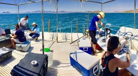 Concluye 3ª campaña estudio físico-químico, corrientes y estado ecológico Mar Menor