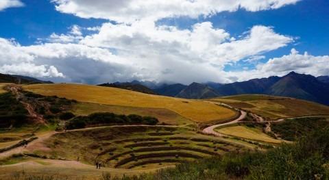 Más agua, menos comida: Incremento acceso al riego y cambios alimenticios