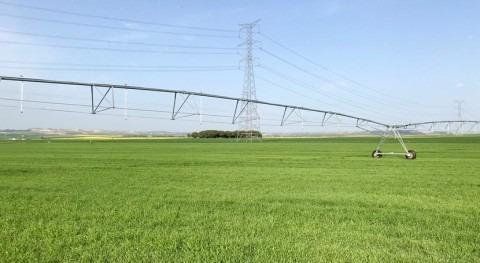 Aprobado acuerdo provisional reutilización agua riego agrícola UE