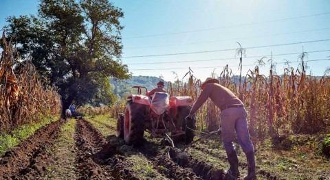 agricultura mundial dispone nuevo instrumento adaptación al cambio climático