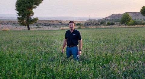 Aplicaciones y ventajas riego goteo subterráneo (RGS): cultivos leñosos y extensivos