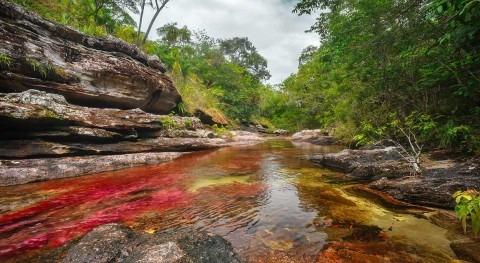 Caño Cristales, río siete colores