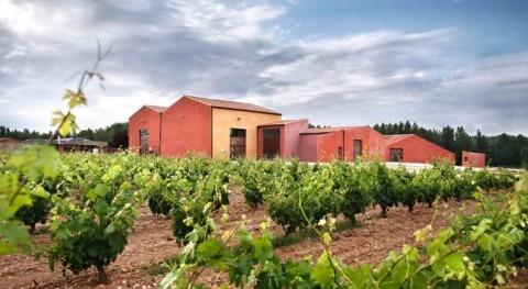 Controles agua sector vinícola