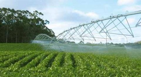 Aumento eficiencia riego: ¿Mejora productividad Agua Agricultura?