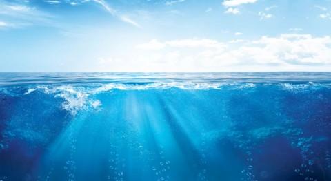Cátedra Agua y Diputación Alicante premian mejor tesis y al mejor TFM