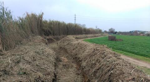Liberado vegetación invasora torrente que transcurre Blanes Cataluña