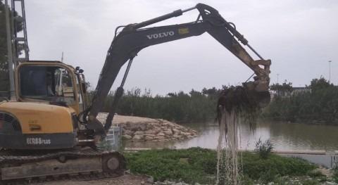 CHS trabaja limpieza cauce antiguo río Segura desembocadura