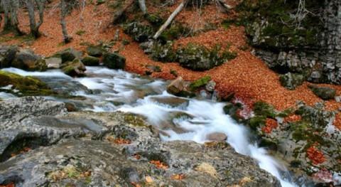 modificación DPH perjudica al caudal ecológico ríos, asociaciones ecologistas