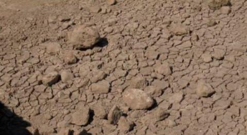 Ecologistas denuncia incumplimiento aplicación caudal ecológico Guadiana