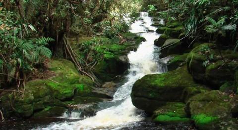 Colombia cuenta nueva propuesta estimación caudales ambientales