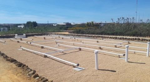 CENTA pone marcha nuevo humedal artificial flujo vertical planta experimental