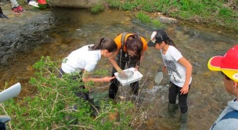 ¿Cómo promover futuro más sostenible mediante actividades educación ambiental?