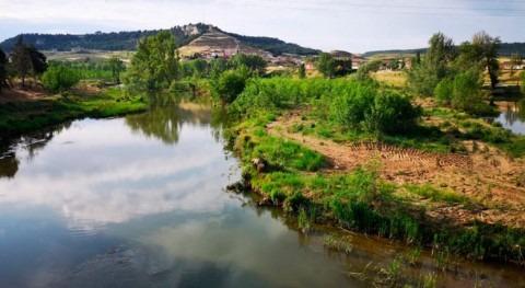 CHD invertirá 1,5 millones euros mejorar cauces provincia Palencia