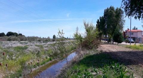 CHD prevé inversión 500.000 euros mejorar cauces provincia Valladolid