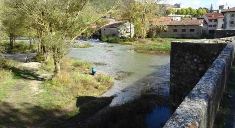 CHE licita análisis muestras diatomeas campañas control ríos