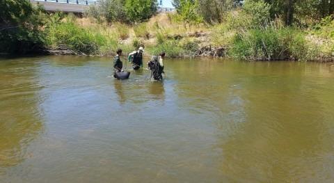 CHE adjudica asistencia red control biológico ríos cuenca