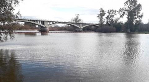 tramo comprendido presa Montijo y frontera portuguesa, presencia camalote