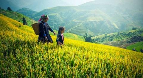 China aprueba nuevo plan hacer frente contaminación aguas zonas rurales