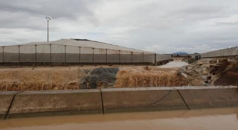 daños canales postrasvase campo Cartagena lluvias, análisis