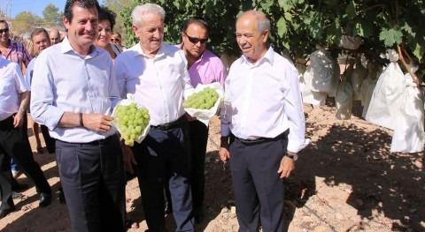 """José Císcar: """"Seguimos apoyando agricultores obtención soluciones que llegue agua allí donde hace falta"""""""