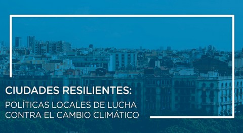 Ciudades resilientes: políticas locales lucha cambio climático