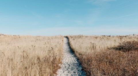 estudio analiza compleja relación clima y conflictos