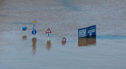 ¿Cuáles fueron desastres climáticos que causaron más pérdidas 2019?