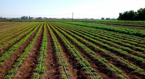 CNR mejorará eficiencia hídrica pequeños agricultores y comunidades agrícolas