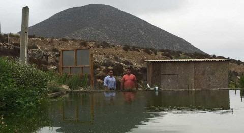 Chile visita proyectos pequeña agricultura comuna Higuera