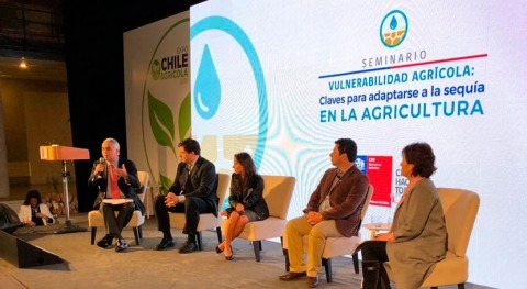 Chile destaca necesidad dar seguridad riego agricultores