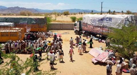 brote cólera Yemen eleva cifra muertos 361
