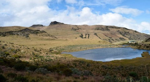 Política Cambio Climático convertirá Colombia país resiliente y carbono