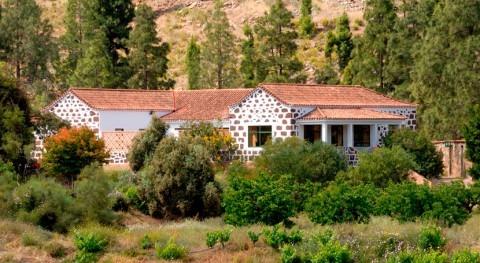 Crítica creadora y propuesta nativo al Proyecto C.H.B. SORIA - CHIRA #GranCanaria