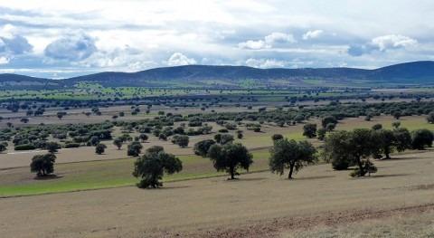 MAGRAMA considera que minería tierras raras Mancha es inviable nivel ambiental