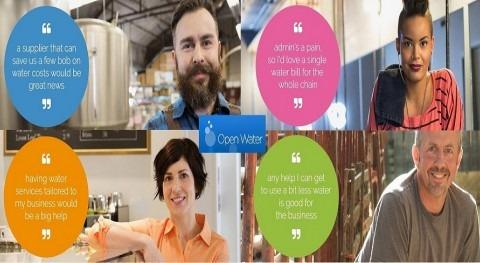 liberalización suministro agua y saneamiento ya está aquí. modelo Open Water inglés
