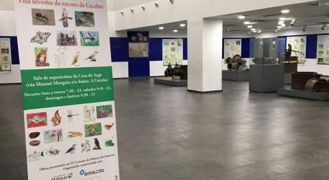 24 febrero, entrega premios concurso dibujo 'Vida silvestre do encoro Cecebre'