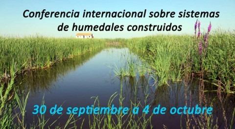 Valencia acogerá conferencia internacional sistemas humedales construidos