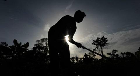 cambio climático y conflictos acrecientan hambre mundo