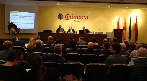 Presentado Consejo Agua demarcación nuevo Plan Especial Sequía Segura